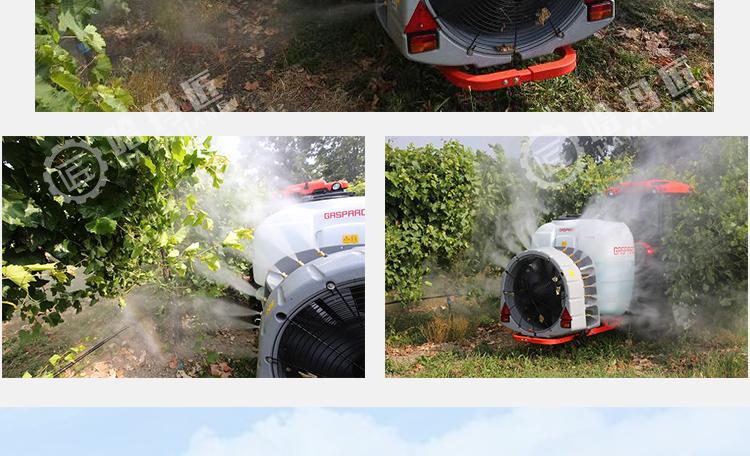 马斯奇奥EXPO型弥雾机
